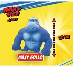 MAXY GOLLO