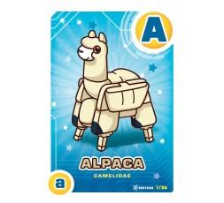 Letrazoo A Alpaca