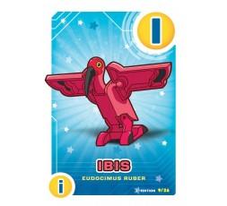 Letrazoo I Ibis